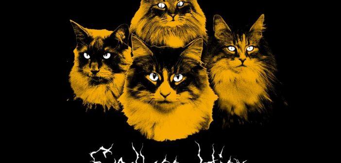 meow mix metal