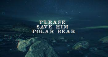 alcatrazz polar bear video